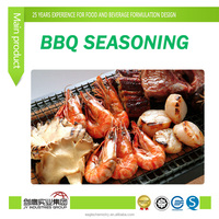 FOOD ADDITIVES/FLAVOR/ESSENCE/flavor enhance/BBQ SEASONING POWDER