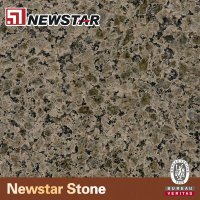Newstar Tropic Desert 24 Inch 49x22 Or Custom Polished Granite Bathroom Kitchen Countertops Vanity Tops & Table Tops