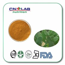 Pure Cactus Plant Extract,Cactus fruit extract for food and pharmic suppliment
