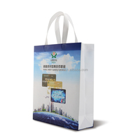 Wholesale Reusable PP Shopping Bag