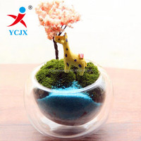 NEW IDEA DESIGN SMALL CLEAR DOUBLE WALL GLASS VASES