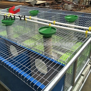 New Design Automatic Rabbit Cage For Poutry Farming