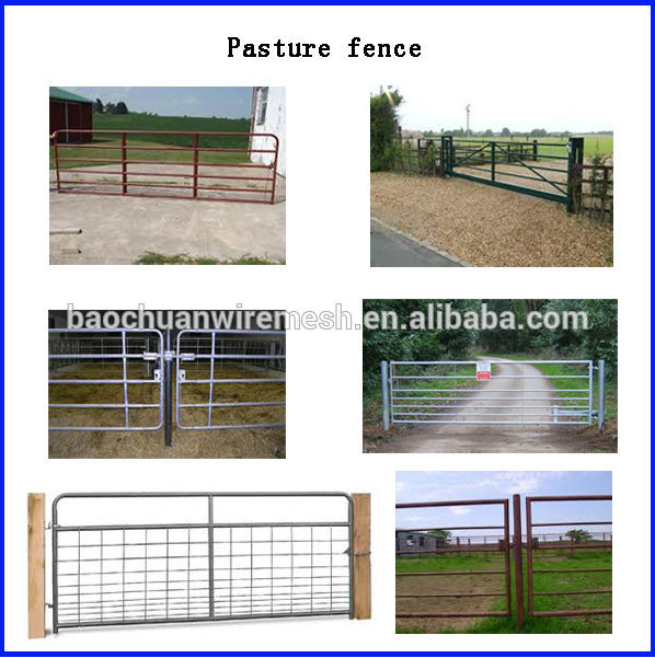 Gate / Wrought Iron gate / Iron Gates