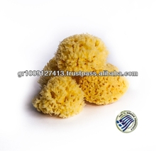Natural Honeycomb sea sponge from greece