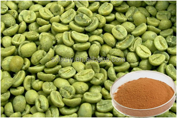 Natural colour plant hot sell natural green coffee bean extract