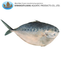 China export lighting catch whole round frozen moonfish for sale