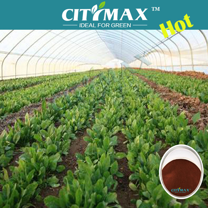 Foliar Special Fulvic Fertilizer For Agriculture