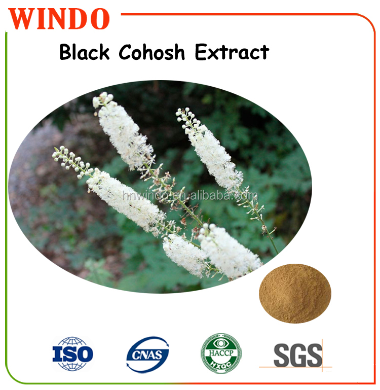 00% Natural Black Cohosh Extract , Black Cohosh Powder Triterpene