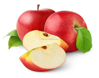 Natural Apple Polyphenols / Phloretin / Phloridzin / Apple Extract