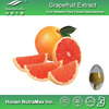 Herb Medicine Grapefruit Seed Extract Powder 4:1 5:1 10:1 20:1