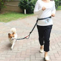 "1"" Width Adjustable Reflective Nylon Running Hands Free Dog Leash No Bungee for Big Dog"