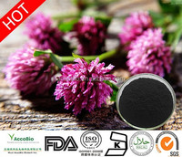 High quality Red Clover extract with 40% Total Isoflavones, Natural herbal extract Red clover, Red clover Isoflavones