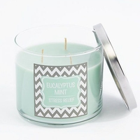 Aromatherapy Type and Multi-Colored Color 3 Wick Triple Scented Candle