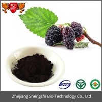 Natural Fruit Mulberry Extract Powder used in Beverage & Cosmetics