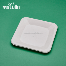 Hot Sell Disposable Eco-friendly Biodegradable Sugarcane Square Plates