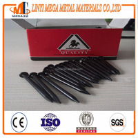 supply angular spiral galvanized black hardened steel concrete nails