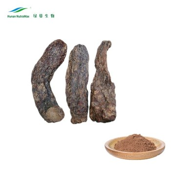 Cistanche Extract Echinacoside, Cistanche Extract Echinacoside 8%, Cistanche Extract Powder Echinacoside with best price