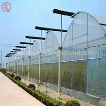 Large multi span tunnel poly film greenhouse with agricultural