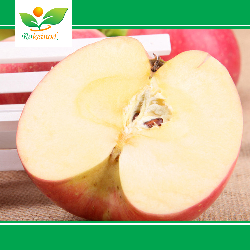 China Supply apple With Best Price For Sale