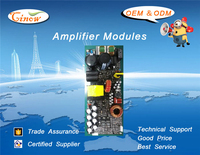 Amplifiers Modules, DF1200,Class D, 1200W/8Ohm.Active Speaker Amp.Modules.