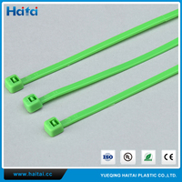 Haitai Free Sample OEM Recycle Insulation Strapping Nylon 66 Cable Tie/Bicycle Cable Tie