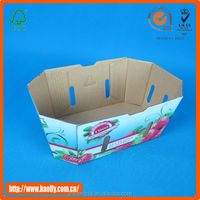 2013 New design custom printed Mushroom Packaging Boxes