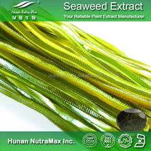Natural seaweed extract polysaccharide, sea algae extract,