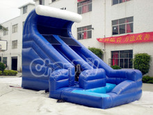 Blue Giant Commercila Inflatable Water/Dry Slide for Adults and Children