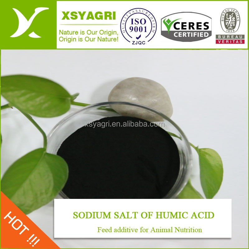 High water solublility sodium humate shiny powder with 65% humic acid for petroleum drilling fluid Vietnam