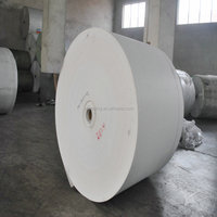 Polyester mat / waterproof membrane / PVC roofing membrane or waterproof membrane