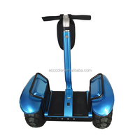 Transportation New Concept! 2000 Watt Lithium Battery Electric Scooter Dealer