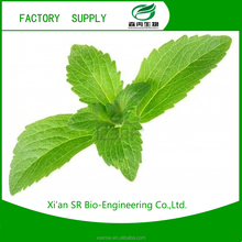 SR China Stevia,Stevia Extract,Stevia Powder