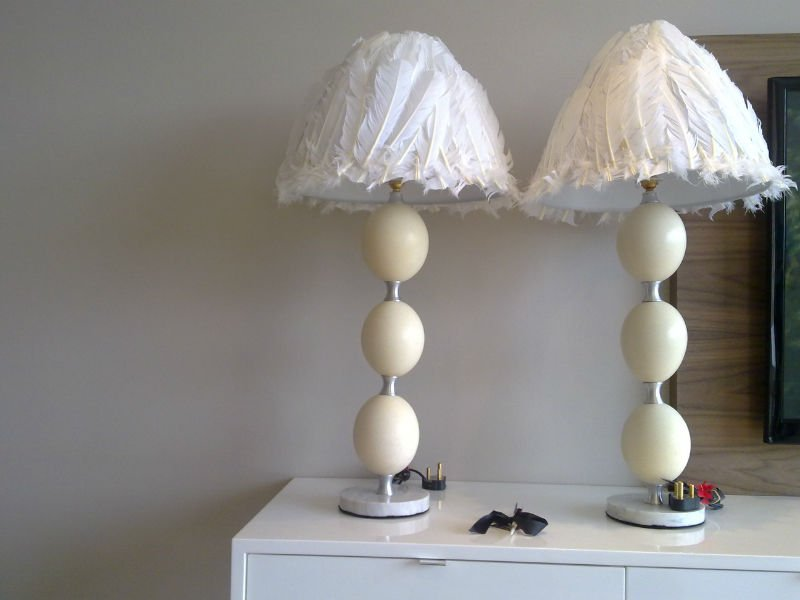 Ostrich Egg Feathered Lamp