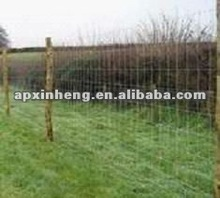 Hot selling ! high quality deer farm fencing