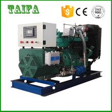 Small and efficient biogas generator set price