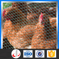 Low Price Hexagonal Chicken Wire Netting/Coop