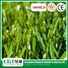 Eco-Friend Design Quality Assurance Hard Plastic Skiing Grass