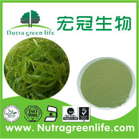 Kelp Seaweed Extract / seaweed extract Natural plant growth promoter