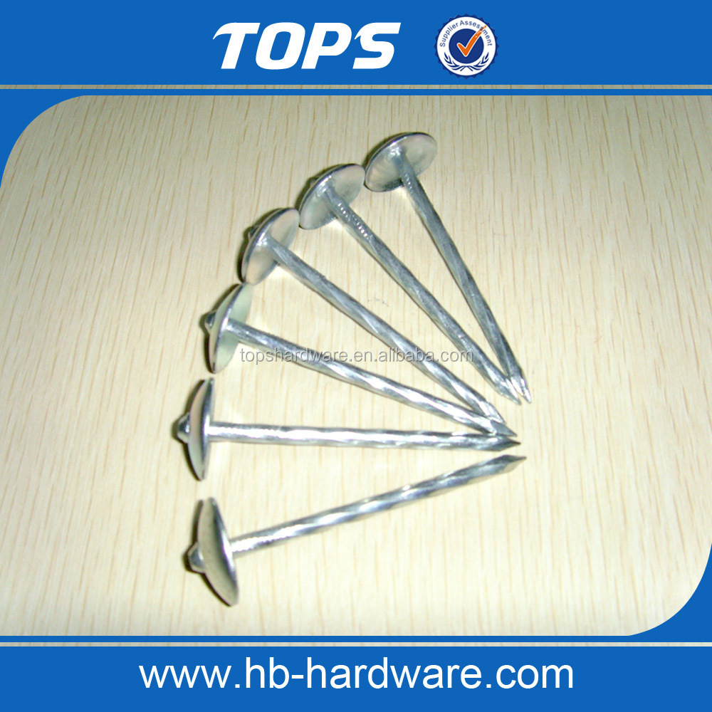 umbrella head roofing nails with screw shank