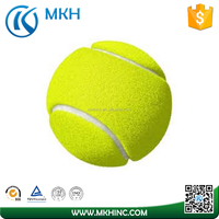 Training Tennis Balls 12 24 48