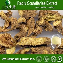 3W Supply Radix Scutellariae Extract,Radix Scutellariae Extract powder ,Radix Scutellariae standarized extract Baicalin 20%-95%