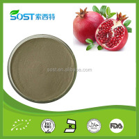 New Products Natural Pomegranate Peel Extract Ellagic Acid Solubility Free Sample
