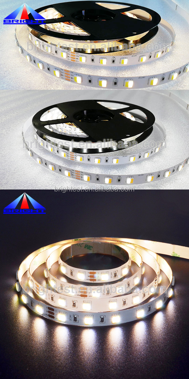 2 In 1 Chip Dual Color Dimmable 12V Flexible LED Strip light 5050 CCT Adjustable
