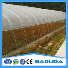 Vegetable Greenhouse With Film Fastening
