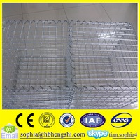 gabion mesh/welded galvanized gabion baskets/ welded gabions