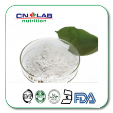 High Quality Organic/Brown Rice Protein Powder for Food Additive