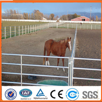 Anping factory Galvanized Pipe Livestock Corral/Horse Panel