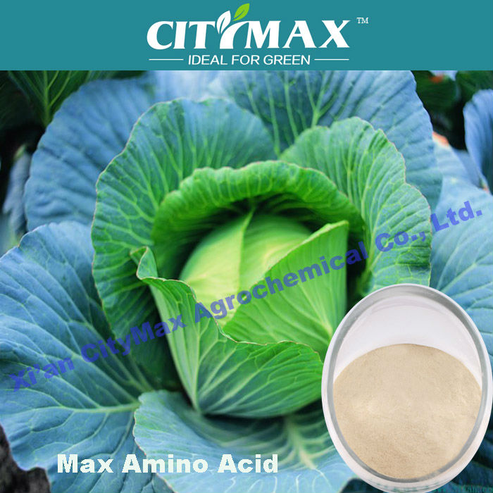 extraction plant amino acid for fertilizer
