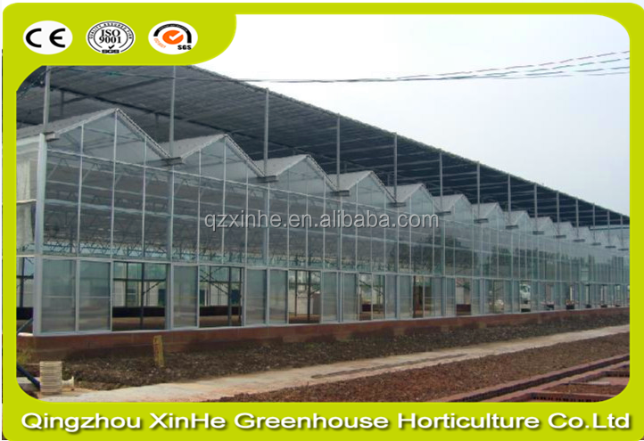 Low Cost Customized Double Layer Air Inflatable Greenhouse Equipment