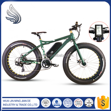 26'' 36V Fat Tire Electric Bike/bycicle